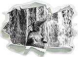 Babyelefant am Wasserfall Kunst B&W, Papier 3D-Wandsticker Format: 62x45 cm Wanddekoration 3D-Wandaufkleber Wandtattoo