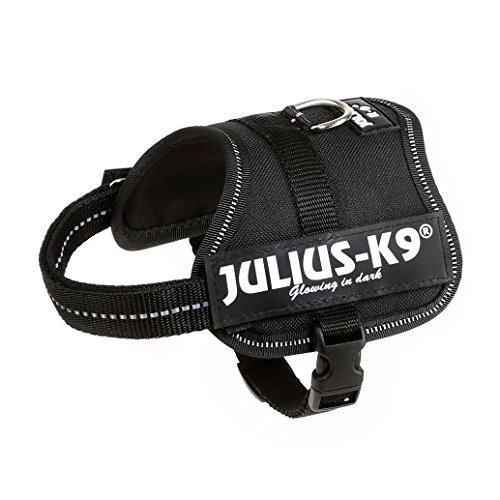 Julius-K9 Baby 2, 33-45 cm, Negro