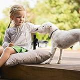 Relaxdays Futternapf Edelstahl Doppelset höhenverstellbar Hundebar mit Napfständer und 2 Hundenäpfen zum Herausnehmen Futterbar für Katzen Katzenbar Fressnapf aus Metall, standard, silber - 4