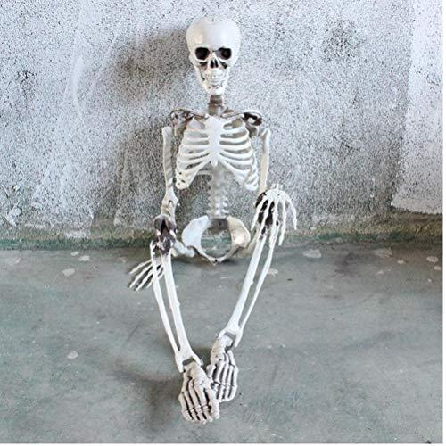 lujiaoshout Menschliches Skelett, Körper-Modell-Schädel-Verzierung für Partei-Festival-Halloween-Dekorationen Prop (90cm)
