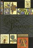 La Biblia de las letras iluminadas: Un tesoro de la caligrafía decorativa (Artes, técnicas y métodos)