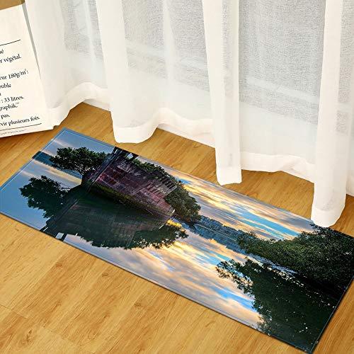 OPLJ Moderner Eingang Fußmatte Home Küchenteppich Wohnzimmer Schlafzimmer Flur Badematte 3D-gedrucktes Muster Kinderbodenteppich A7 40x120cm