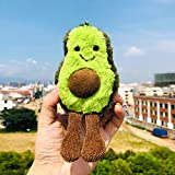 VickyPOP Cute Avocado Plush Toy Fruit Stuffed Pillow Pretty Gift for Girls or Boys Friends (Plush Keychain, 5.5)