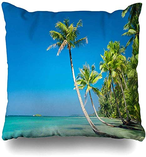 BONRI Throw Pillow Cover Natural Green Palm Tree Serenity Shore Relax Peace Nature Hawaii Parques Paisaje Agua Playa Cloudscape Funda de cojín para el hogar Pollos Cuadrados 20×20pulgada