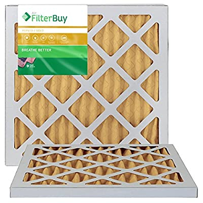 Furnace Filters/Air Filters - AFB Gold 11 (2 Pack)
