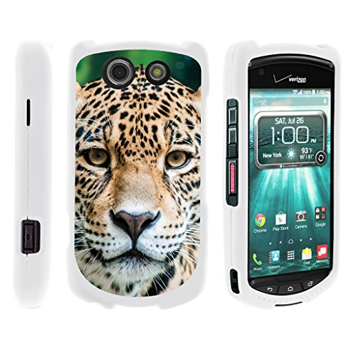 TurtleArmor | Compatible with Kyocera Brigadier Case | E6782 [Slim Duo] Slim Light Compact 2 Piece Hard Snap On Case Matte Animal on White - Hypnotic Leopard