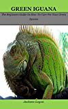 Green Iguana: The Beginners Guide On How To Care For Your Green Iguana (English Edition)