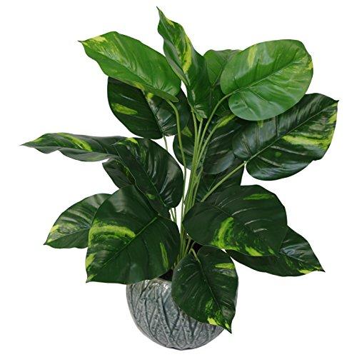 Leaf Design UK-Planta Artificial de 60 cm, en Maceta de plástico Negro, Hiedra del Diablo