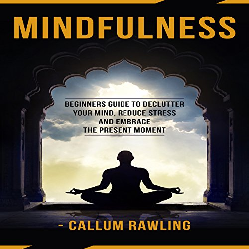Mindfulness: Beginners Guide to Declutter Your Mind, Reduce Stress, and Embrace the Present Moment audiobook cover art