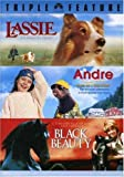 Andre [USA] [DVD]