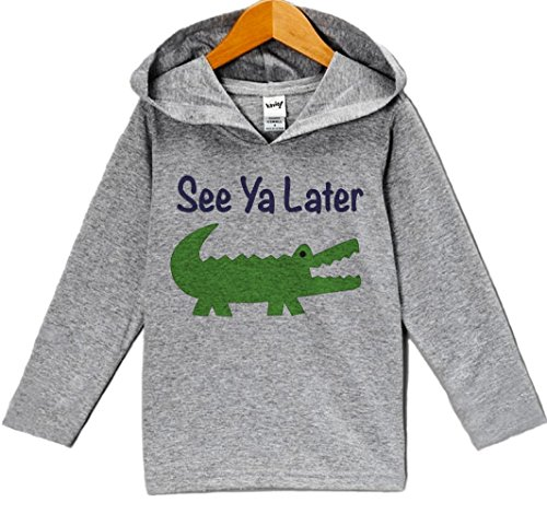 Custom Party Shop Baby Boy's Novelty Alligator Hoodie Pullover 12 Months Grey and Green