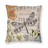 niBBuns Decorative Pillowcase Modern Vintage French Dragonfly,Square Cushion Cover Standard Pillowcase for Men Women Home Decorative, 18x18 inch