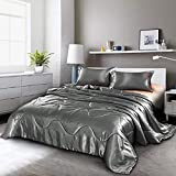 Holawakaka Luxurious Solid Satin Silk Like Comforter Set Ultra Soft Silky Quilt Breathable Bedding Bed-in-A-Bag Queen Size (Grey)