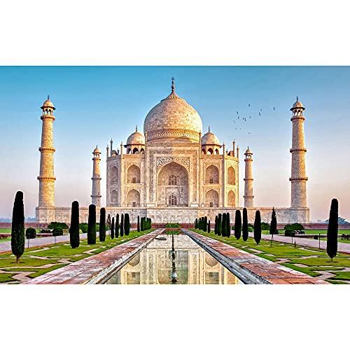 ZHXXFD Pintar Por Numeros Adultos Niños Taj Mahal Cuadros Para Pintar Por Numeros Paisajes Animales Diy Paint By Numbers Kits 40X50CM(A12)