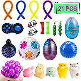 Elongdi Sensory Fidget Toys Set [ 21 Pack ] Bundle Sensory Toys Set - Fidget Pad/Mochi Toys/Squeeze-a-Bean/Magic Ball/Stretchy Strings/Bike Chain/Mesh Marble/Squeeze Toys/Fluffy Slime