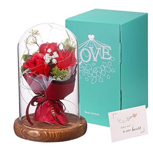 Rosa Eterna en Cúpula de Cristal Rosa Bella y Bestia Rosa Preservada para Amor en el Día de San Valentín Aniversario Amigos Regalo de Cumpleaños