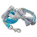 Zzxx - Juego de collar de perro con lazo y correa de nailon, para cachorro mediano y perros Pitbull Chihuahua, azul, Small