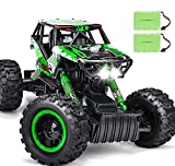DOUBLE E 4WD RC Cars Newest 1/12 Scale Remote Control Car with Rechargeable Batteries and Dual Motors Off Road Monster RC Trucks for All Adults & Kids