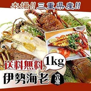 冷凍 伊勢海老(加熱用) 国産天然 少し訳あり 2尾 1kg[魚介類]