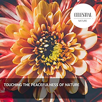 Touching the Peacefulness of Nature