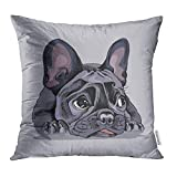 Emvency Throw Pillow Covers Decorative Cases Dog French Bulldog Portrait Face Lying Adorable Animal Black Bored Character 16x16 Inch Cover Cushion Pillowcase Square Case Print