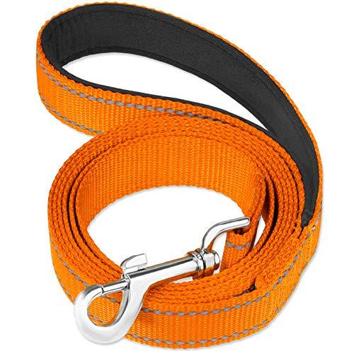 FunTags Reflektierende Hundeleine mit weich gepolstertem Griff für Training, Gassigehen, für große, mittlere und kleine Hunde, 1,8 m, 1 in x 6 ft, Orange