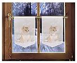 2er Set Scheibenhänger Katze Weihnachtsgardine winterliche Landhausdeko 45 x 30 cm