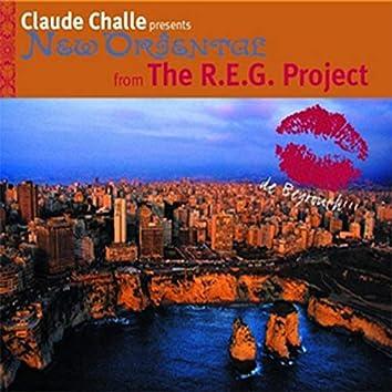 The R.E.G Project