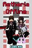 Aetheria Offline: An Interactive LITRPG Series