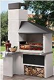 PALAZZETTI Barbecue a Legna e carbonella MOD. Faro New