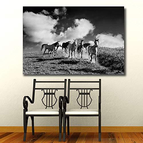 SADHAF Impresión en blanco y negro Pintura Cielo y Caballo Paisaje Pintura Decoración del hogar Accesorios de dormitorio Impresión en lienzo A6 70X100cm