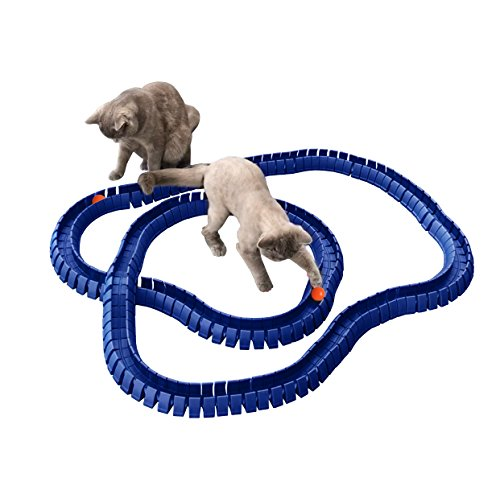 Magic Cat Track and Ball...