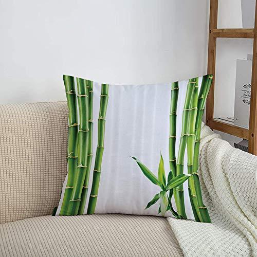 Fundas de cojines sencillas y clásicas de 45 x 45 cm,Conjunto asiático, ramas de bambú Tablero Tallo Trópicos P,ideales para casa, oficina o para la espalda en el coche - Fundas de Poliéster para sofá