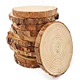Unfinished Natural Wood Slices 12 Pcs 3.5-4 inch Craft Wood kit Circles Crafts Christmas Ornaments DIY Crafts with Bark for Crafts Rustic Wedding Decoration by William Craft (3.5-4inch)