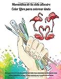 Maravillas de la vida silvestre - Color Libro para colorear lindo - Dibujos educativos fáciles y divertidos para colorear de animales para niños ... y jardín de infantes (Spanish Edition)