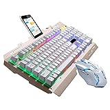 Deeabo Teclado Y Mouse para Juegos, 7 Colores Teclado para Juegos con Retroiluminación LED Combo de Mouse Y Teclado Juegos con Alimentación USB para Computadora de Escritorio, Grabado de Caracteres