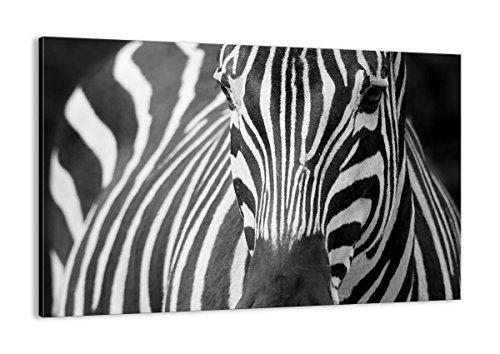 Cuadro sobre Lienzo - de una Sola Pieza - Impresión en Lienzo - Ancho: 120cm, Altura: 80cm - Foto número 2254 - Listo para Colgar - en un Marco - AA120x80-2254