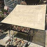 Lqqdp Malla Sombreadora Vela de Protección Solar de Efecto Invernadero, Malla de Pantalla de Privacidad de Color Beige/con Ojales, para el Camping con Balcón Pergola Parking (Size : 3×6m/9.8×19.7ft)