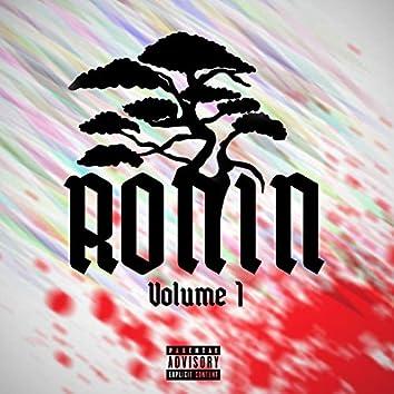 Ronin, Vol. 1