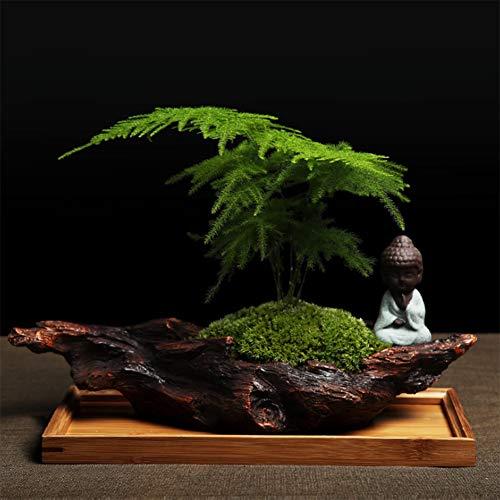CGBF Kunstplant echte plant en kunstmatige bonsai-decoratie voor binnen, Boeddha met kunstmatige bloempot van hout, voor de tuin op kantoor, met mat bamboe