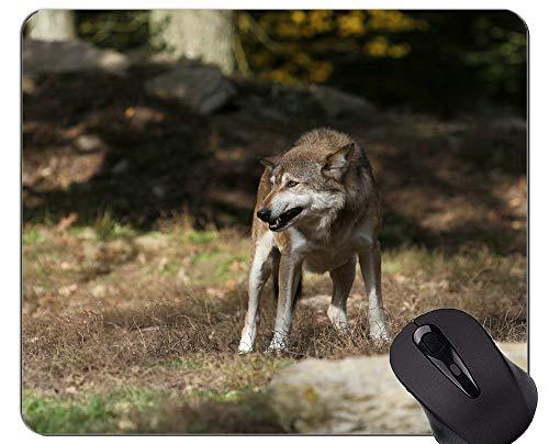Gaming Mousepad, Wolf Nature Animal Hunter Mauspads und Furry Mouse-Pads Jetzt zugreifen: 15% Rabatt auf ALLE Produkte!