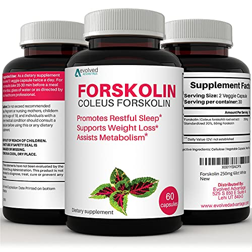 100 pure forskolin extract - 9