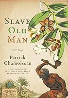 Slave Old Man: A Novel