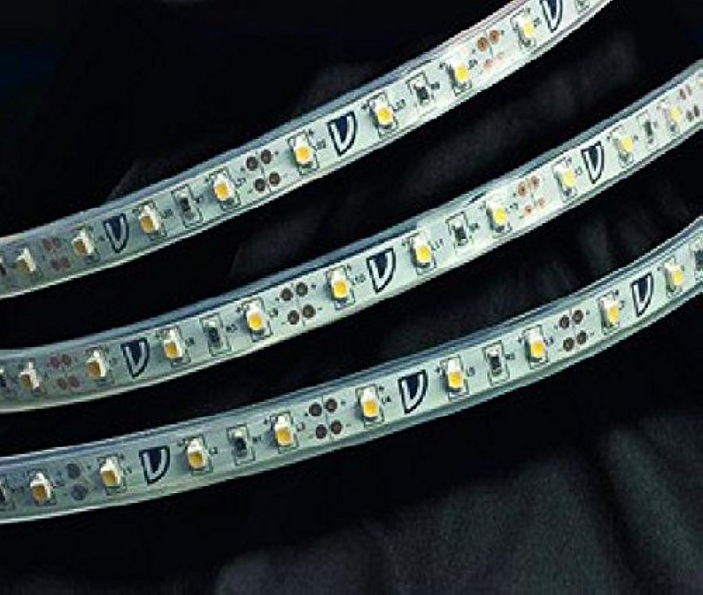 LED-Flexstreifen, 300 x LEDs 12V-DC 24W
