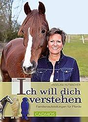 Familienaufstellung für Pferde