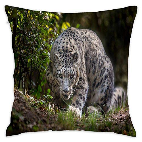 Snow Leopard Look Grass Cotton Square Throw Pillow Cushion Sofa Home Decor Accent Pillowcase Slip Encasement 18x18 Inches