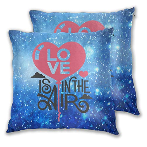 Chenping Home Brilliant Decorative Pillow Covers Set of 2...