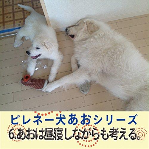 『ピレネー犬あおシリーズ 06.昼寝しながらも考える。』のカバーアート