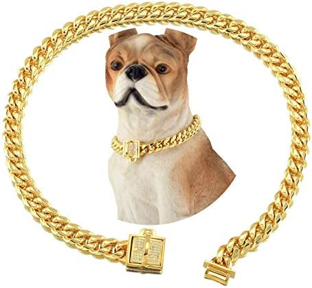18K Gold Dog Cat Collar XS Small Metal Stainless Steel 10mm Luxury Training Collar Cuban Link product image