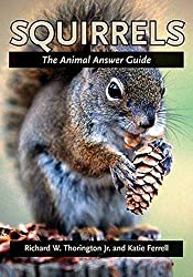 Image: Squirrels: The Animal Answer Guide (The Animal Answer Guides: Q+A for the Curious Naturalist), by Richard W. Thorington Jr. (Author), Katie E. Ferrell (Author). Publisher: Johns Hopkins University Press (August 28, 2006)